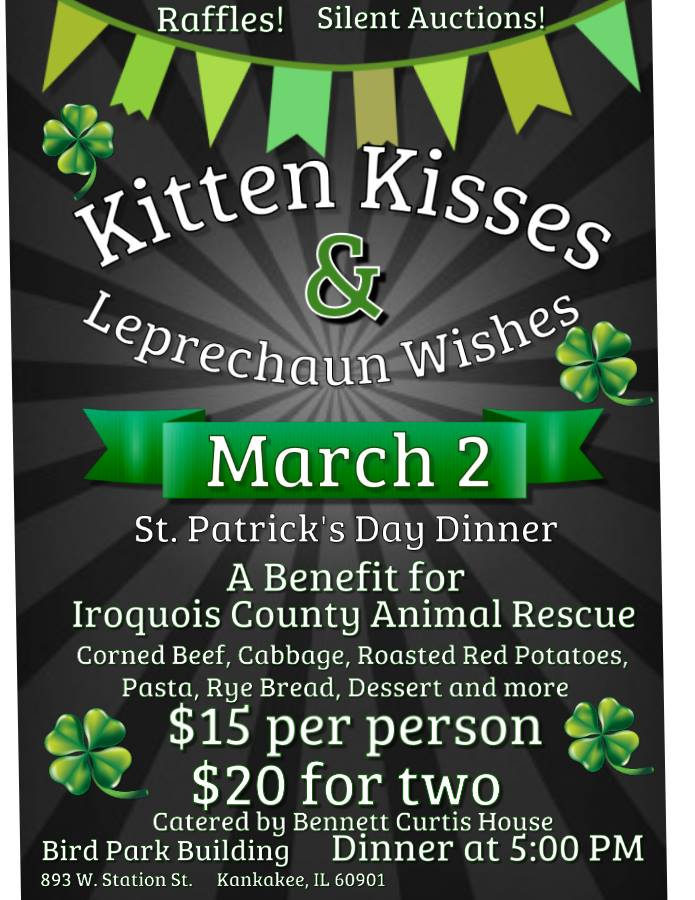 Kitten Kisses & Leprechaun Wishes